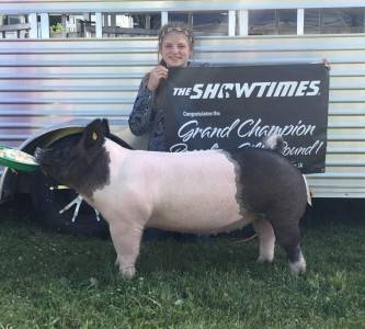 2016 Multiple-time Champion Breeding Gilt