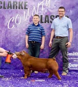 2016 Multiple-time Champion Duroc and Top 5 Overall Barrow