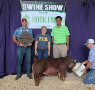 Champ Purebred Barrow 2018 Grundy Co Fair