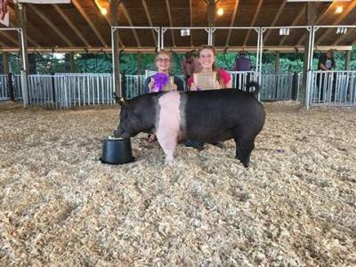 Eaton County Fair Champion