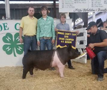 Grand Overall Barrow 2018 Monroe County Fair, IN