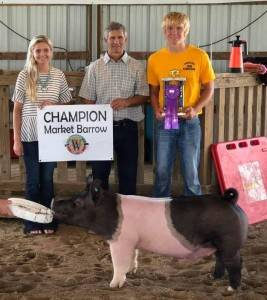 Grand Champ Barrow Winnebago Co Fair