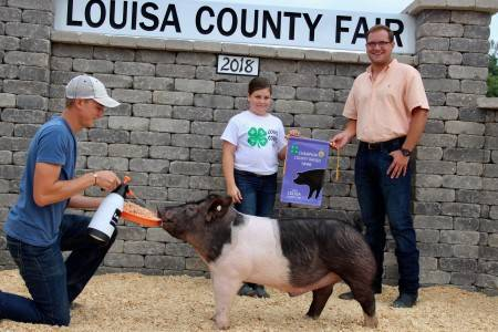 Grand Champion Home Raised Barrow Louisa Co Fair