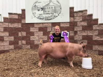 Grand Champion Overall Lyon Co Fair