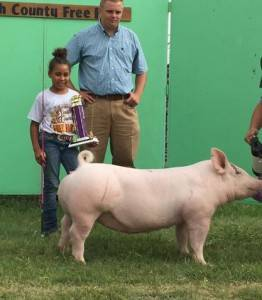 2016 Reserve Overall, Smith County Fair