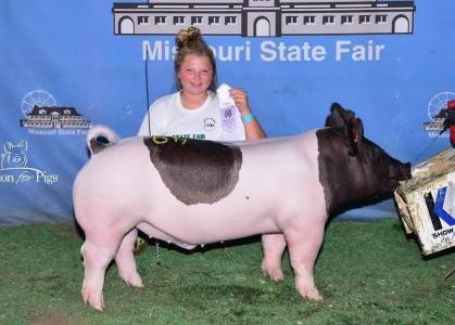 2016 Reserve Champion Heavweight Barrow