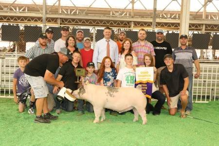 Grand Champion Market Hog IA State Fair 4-H