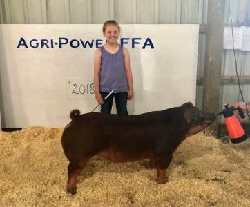 Reserve Champion Duroc Agri-Power FFA Show