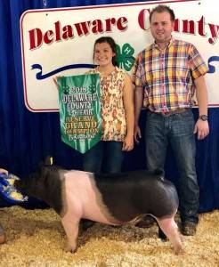Reserve Grand Champ Barrow Delaware Co Fair IN