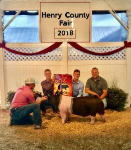 Reserve Grand Champion Barrow Henry Co OH