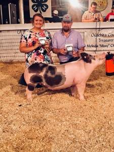 Reserve Grand Champion Overall Ouachita jackpot AR