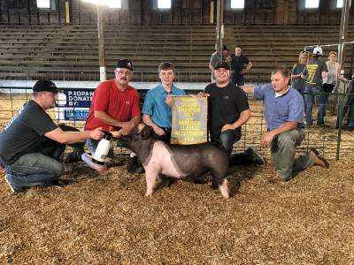 Reserve Grand Gilt Maverick Classic IN