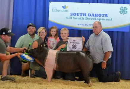 2016 Reserve Grand Overall & Champion Market Gilt
