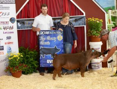 champ duroc & 3rd Overall Sac and Ida