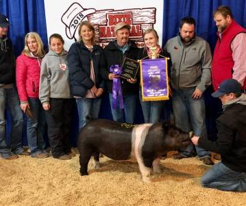 Grand Champion Overall Market Hog 2018 Dixie National