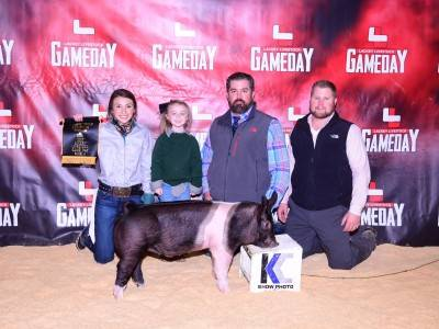 Multiple-time Breed Champion 2017 Texas Winter Jackpots