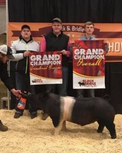 Grand Champion Overall Market Hog 2018 ISU Block & Bridle Show