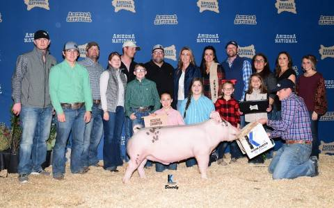 Reserve Crossbred Barrow 2017 Arizona National Livestock Show