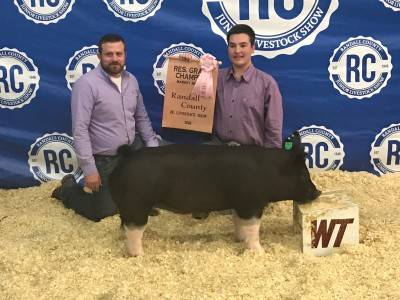 Reserve Grand Barrow 2018 Randall County Jr Livestock Show, TX