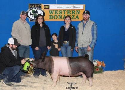 5th Overall Market Gilt 2018 Western Bonanza Day 2
