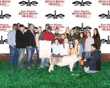 Reserve Grand Overall Barrow 2018 Fort Worth Stock Show