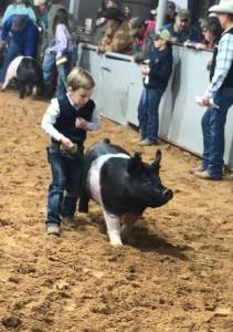 Grand Overall Market Hog 2018 Stonewall County, TX