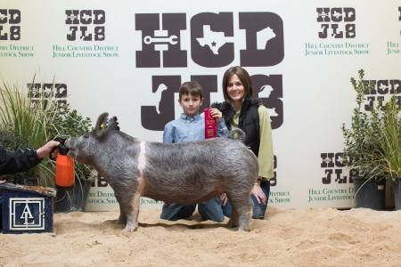 Reserve Champion Lightweight Crossbred Gilt 2018 Hill Country District Show