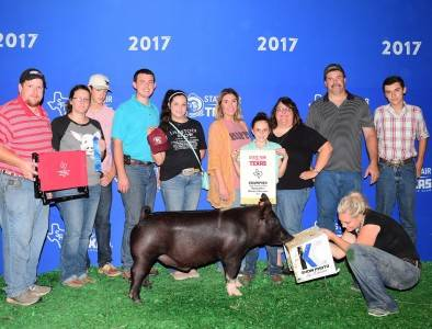 2017 Champion Hampshire Barrow
