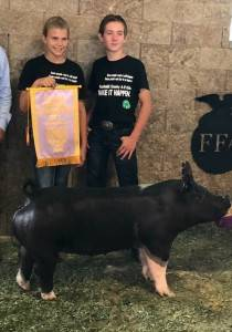 Reserve Grand Champion Commercial Gilt 2018 Wright Co Fair IA