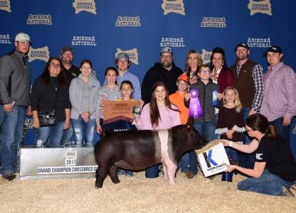 Grand Champion Cross Gilt & Supreme Overall 2017 Arizona National Livestock Show