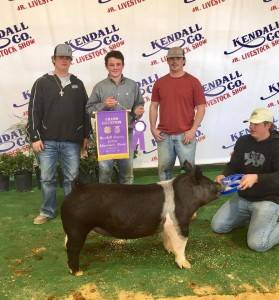 Grand Champion Overall 2018 Kendall County Jr Livestock Show