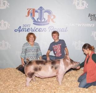 2017 American Royal 4th Overall Division 2 Cross Barrow