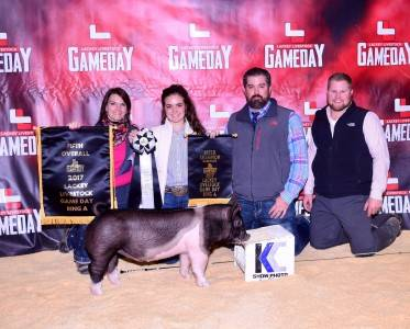 Champion Hamp Barrow Ring A & B 2017 Gameday Jackpot, TX
