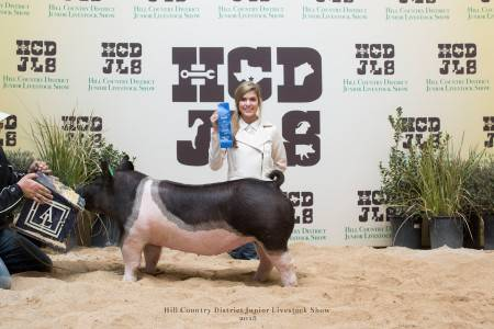 Champion Heavy Middleweight Crossbred Gilt 2018 Hill Country District Show
