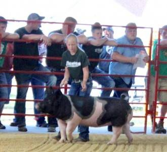 Delaware Co Grand Mkt Gilt