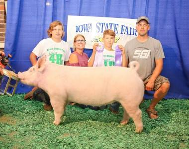 Res Div 1 Breeding Gilt 2017 ISF 4H