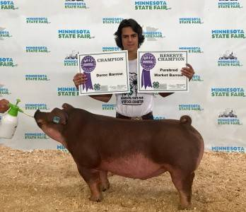 Res Grand Champ Purebred Barrow