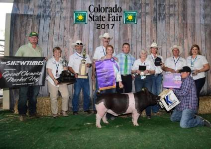 Entry 2 for 2017 CO State Fair Champ
