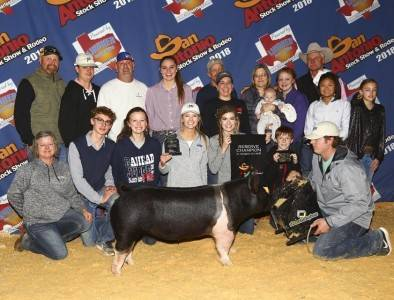 Reserve Grand Crossbred Gilt 2018 San Antonio Breeding Gilt Show