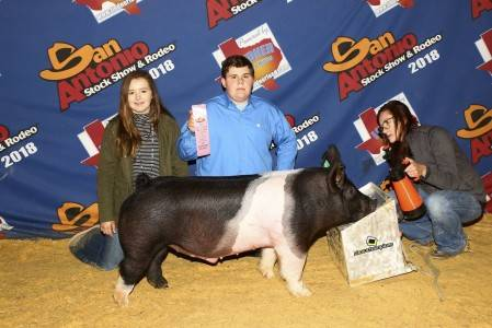 Premium Sale Barrow 2018 San Antonio Stock Show