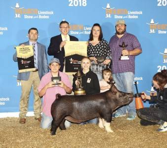 Reserve Grand Champion Overall Barrow 2018 Rodeo Houston