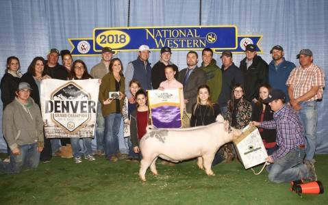 Grand Overall Barrow 2018 National Western Stock Show