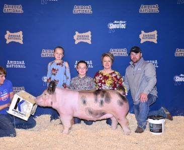 3rd Overall Crossbred Gilt 2018 Arizona National Livestock Show