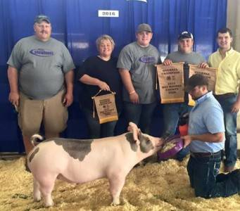 2016 Grand Overall, Des Moines County Fair