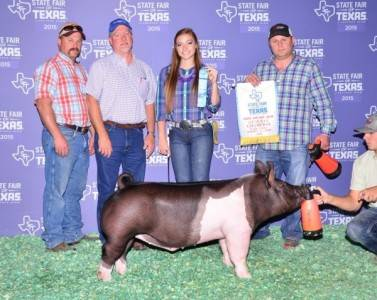 2015 Reserve Grand Champion Dark Crossbred Barrow