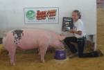 Jones County Fair, Monticello, IA 7/19/12