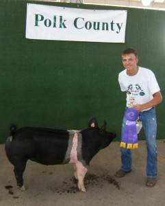 Polk County Fair - Des Moines, IA
