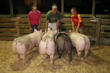2012 Warren County Fair-indianola, IA